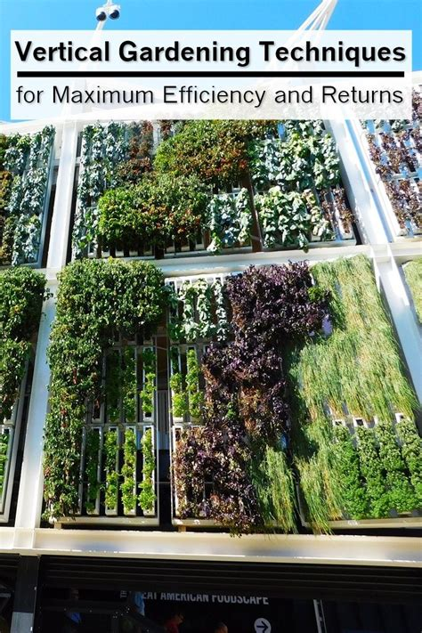 Vertical Gardening Techniques by Vertical Gardening Techniques For Maximum Efficiency And