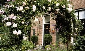 Rosen Selber Ziehen : rosen vermehren ~ Lizthompson.info Haus und Dekorationen