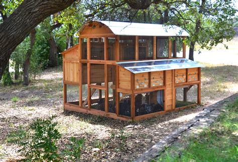 best chicken coop design top walk in chicken coop coop company