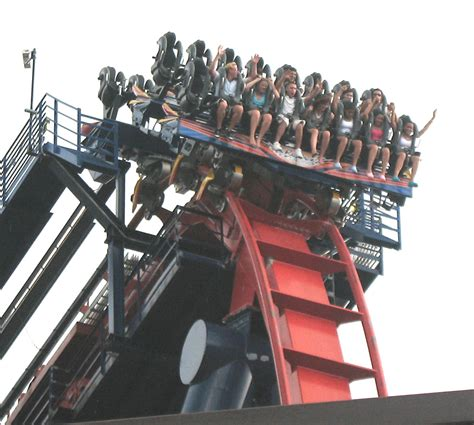 busch gardens sheikra top 10 roller coasters in orlando cultural travel guide