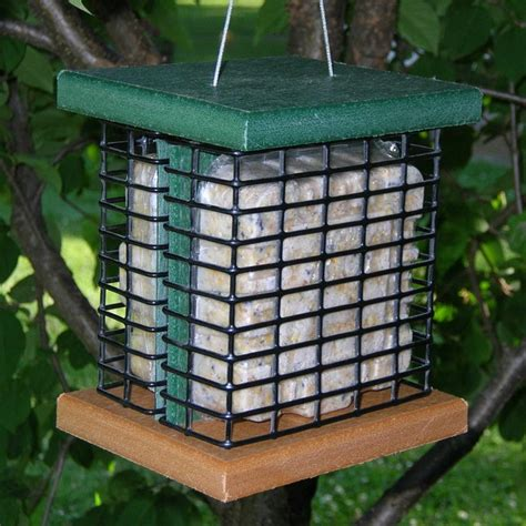 recycled poly double suet feeder modern bird feeders