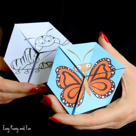 butterfly life cycle paper plate toy craft free fjextange template the activity mom life cycles printable the activity mom