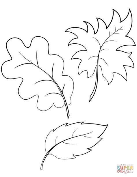 Coloring Leaves by Fall Autumn Leaves Coloring Page Free Printable Coloring
