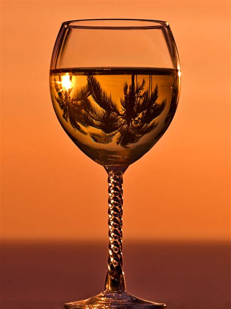 beautiful pictures  wine glasses