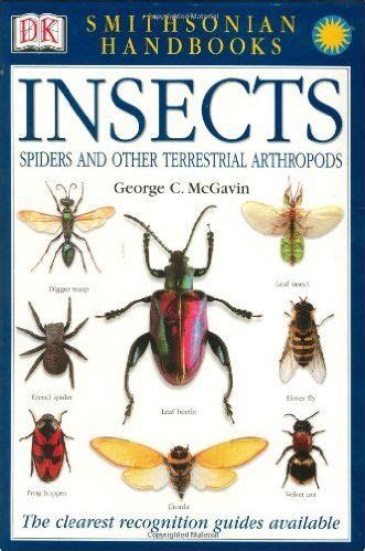 best 25 insect activities ideas on bug 660 | 79b4f1ec0ce7581359af6df6980f93d8 insect activities literacy activities
