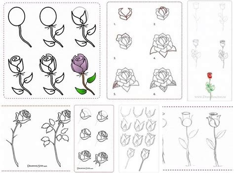 How To Design A Flower Garden Step By Step how to draw flowers step by step diy tutorial