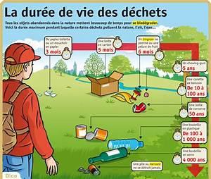 Durée De Vie D Un Moucheron : stop aux dechets ~ Farleysfitness.com Idées de Décoration
