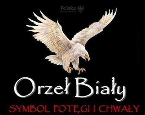 orzel bialy symbol potegi  chwaly polska poland