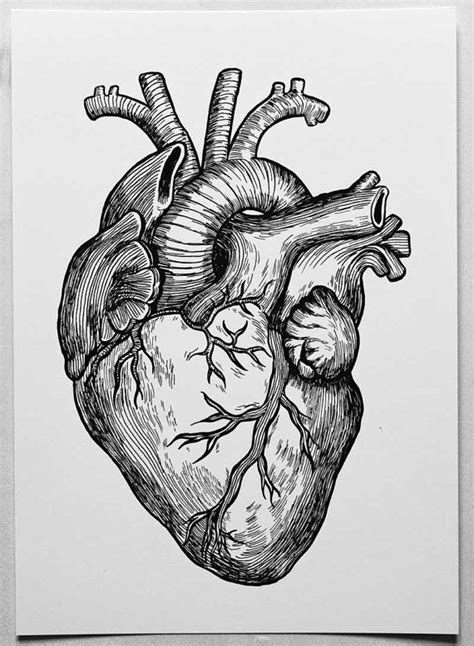 Heart A4 Poster of my original ink drawing by DIANASTANGA on Etsy, €12.01 | inspiration concepts