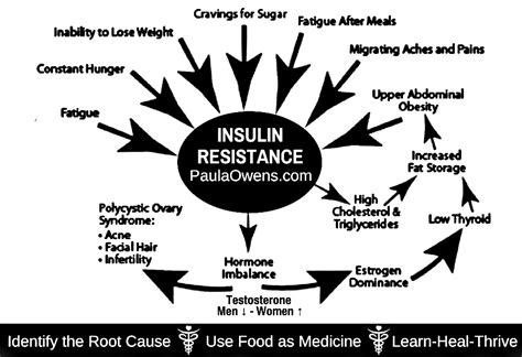 insulin resistance  diabetes paula owens ms holistic