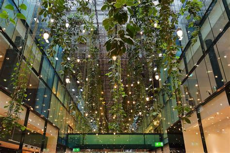 The Of Hanging file f 252 nf h 246 fe hanging gardens munich april 2017 jpg