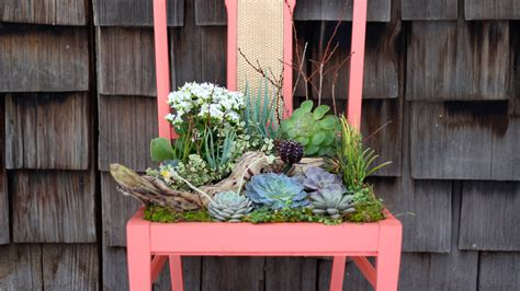repurpose vintage chairs  charming succulent planters