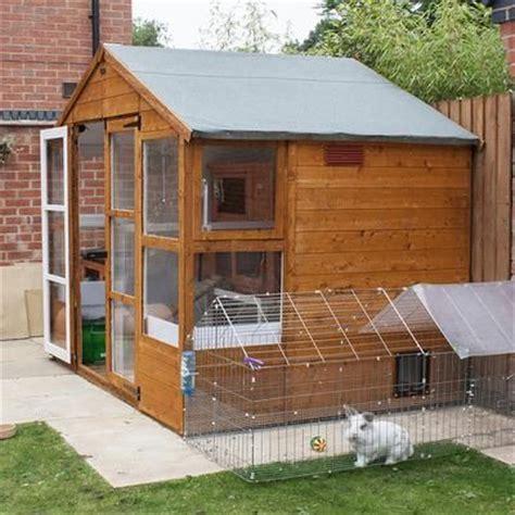 ideas  rabbit shed  pinterest  house