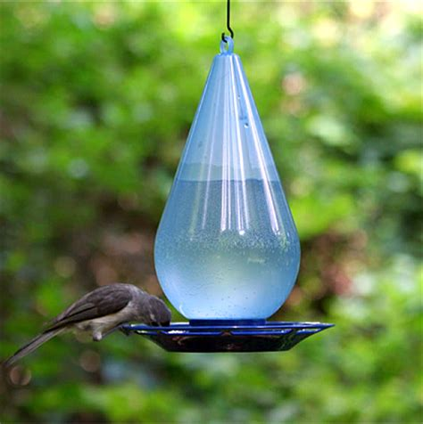 bird water feeder bird waterers for providing water to backyard