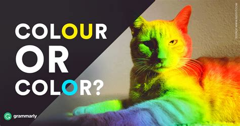 how do you spell color colour or color which is correct grammarly