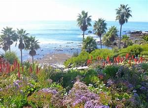 Laguna Beach CA, Laguna Beach Homes for Sale or Rent