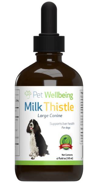 milk thistle  dog liver disease petwellbeingcom