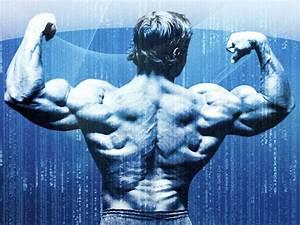Bodybuilding wallpaper 102509