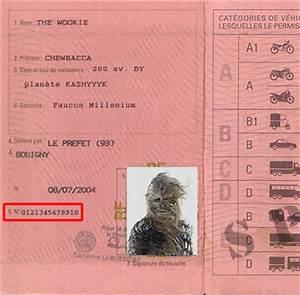 Numero De Permis De Conduire : comment trouver mon ancien num ro de permis de conduire fiche pratique sur ~ Medecine-chirurgie-esthetiques.com Avis de Voitures