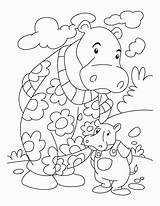 Hippo Coloring Printable Colouring Nilpferd Hppo Bestcoloringpages Ausmalbilder Hippos Drawing Popular Sheets Library Clipart Clip Erste Seite sketch template