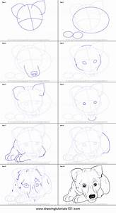How To Draw German Shepherd Puppy Printable Step By Step