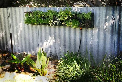 Ein Vertikaler Garten Selber Bauen