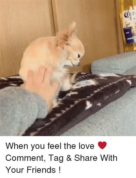 Feel The Love Meme - 25 best memes about feel the love feel the love memes