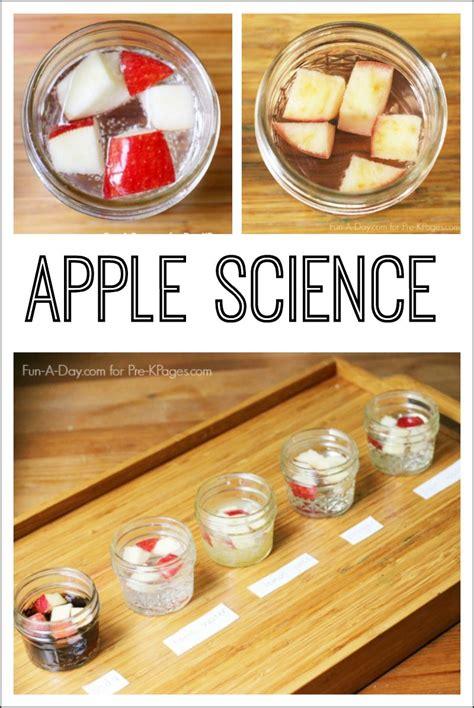 apple science experiment preschool apple theme easy 771   7ce1b853d9178b03a9f7632f2ccf1189