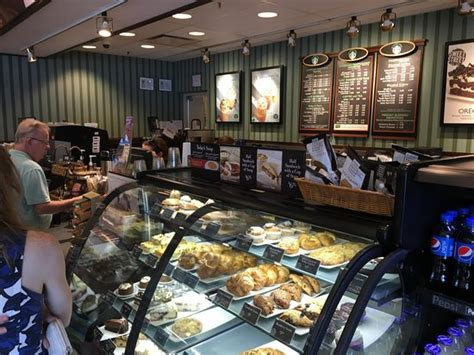 Barnes And Noble Pittsford Ny by Barnes Noble Cafe Pittsford Restaurant Reviews Phone