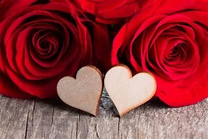 Heart Roses Flower Rose Flowers Romantic Background