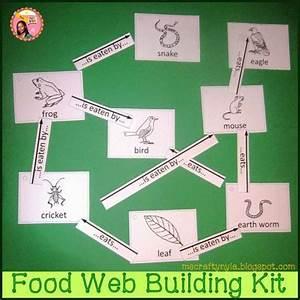 Nyla U0026 39 S Crafty Teaching  How To Make A Food Web