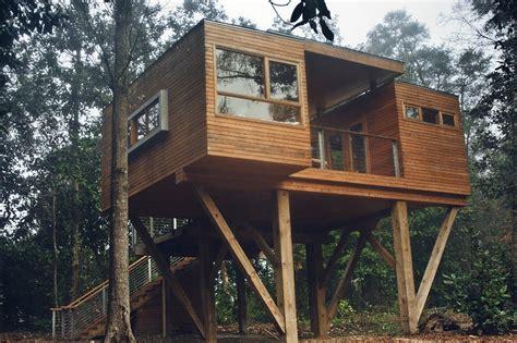 modern treehouse coldwater gardenscoldwater gardens