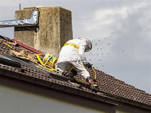 Wie Wird Ein Dach Gedämmt : hornissennest am grundst ck so verh lt man sich richtig ~ Lizthompson.info Haus und Dekorationen