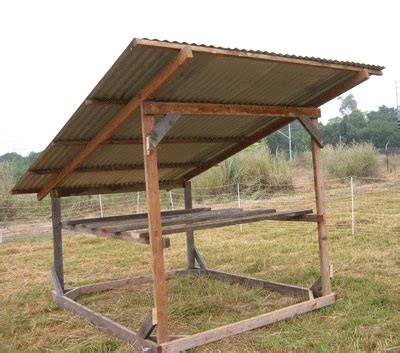 turkey coop designs i need help which turkey housing option would you