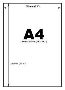 The Folder People-Understanding Paper Sizes-Understanding