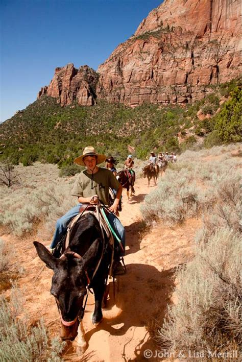 zion horseback canyon rides riding national park trail grand end bryce