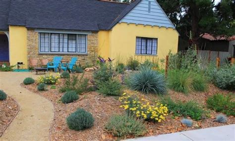 xeriscaping los angeles edible landscape and xeriscape los angeles by the woven garden