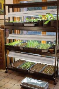 using fluorescent lights to grow vegetables best grow lights for starting seeds indoors video