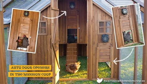 automatic chicken coop door grant author at chicken houses page 5 of 50