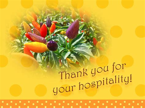 thank you for your hospitality hospitality thank you quotes quotesgram