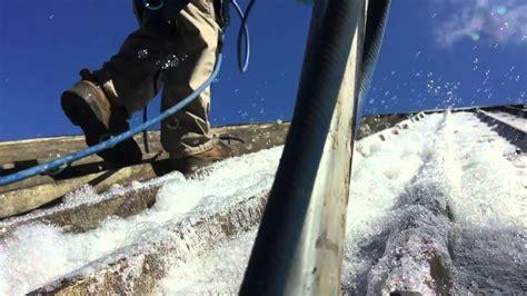 Nettoyage Toiture Anti Mousse