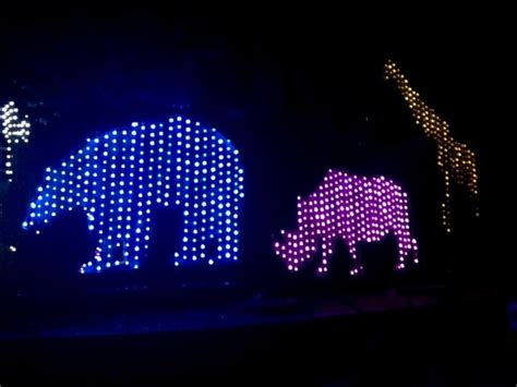 discount tickets to see la zoo lights socal field trips