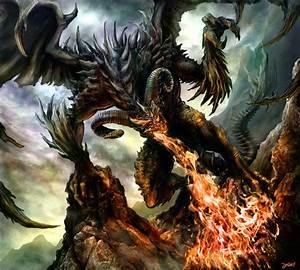 Black Dragon Picture – WeNeedFun
