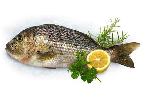 pesci cucina cucina salutare e originale 5 ricette con il pesce
