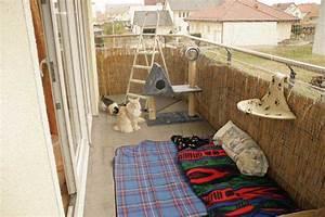 Balkonschutz Für Katzen : der sichere balkon ~ Eleganceandgraceweddings.com Haus und Dekorationen