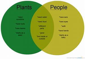 Plants Vs People   Venn Diagram