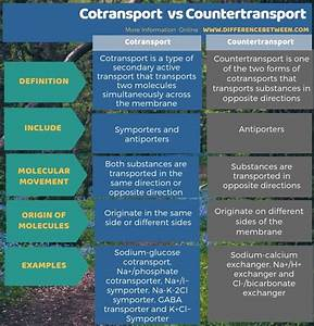 Difference Between Cotransport And Countertransport