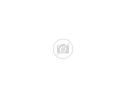 Night Moon Stars Scene Vector Clipart Vectors
