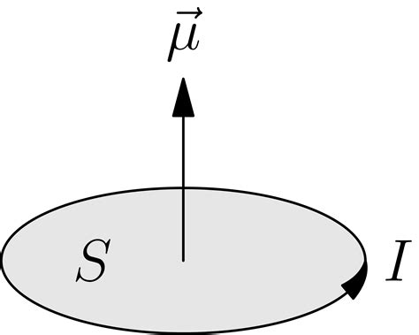 Proton Magnetic Moment by Momento Magnetico
