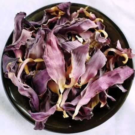 ชาดอกบัวหลวง (Sacred Lotus Flower Tea) - Chiangmaitea